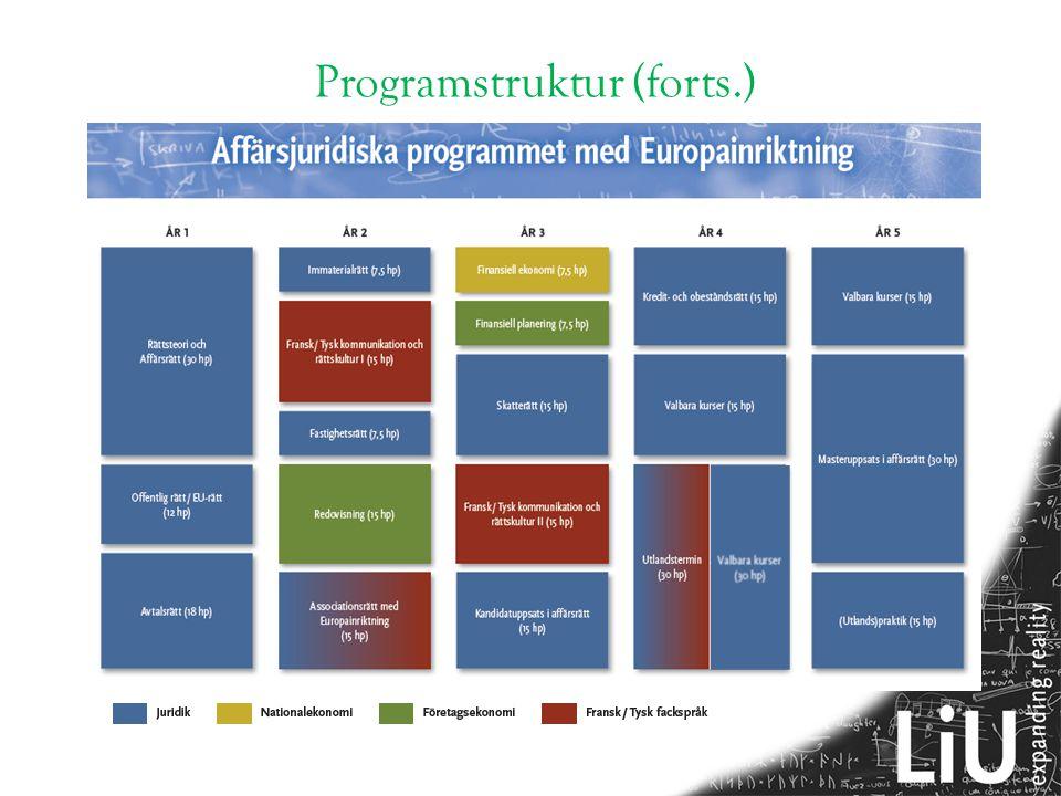 Programstruktur (forts.)