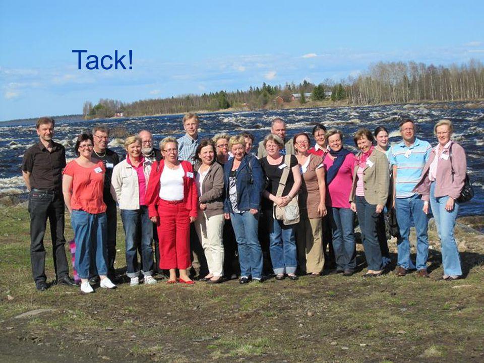 Tack! Bild på projektdeltagare stående vid Kukkolaforsen Torneälv (gränsälven mellan Sverige och Finland)