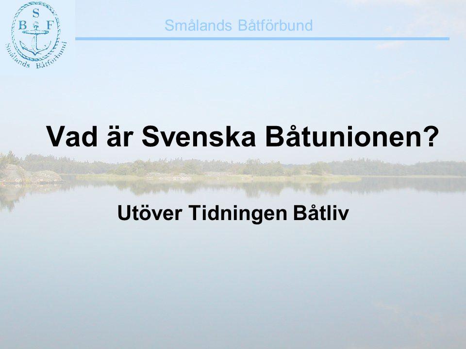 Vad är Svenska Båtunionen