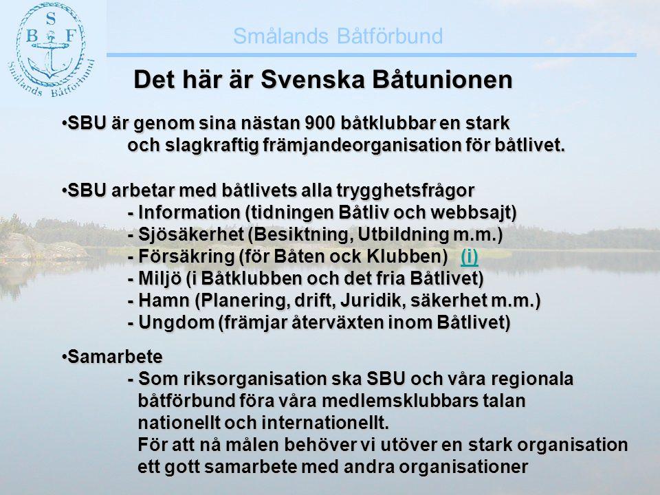 Det här är Svenska Båtunionen