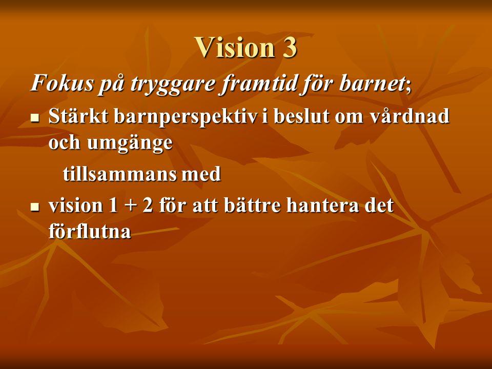 Vision 3 Fokus på tryggare framtid för barnet;