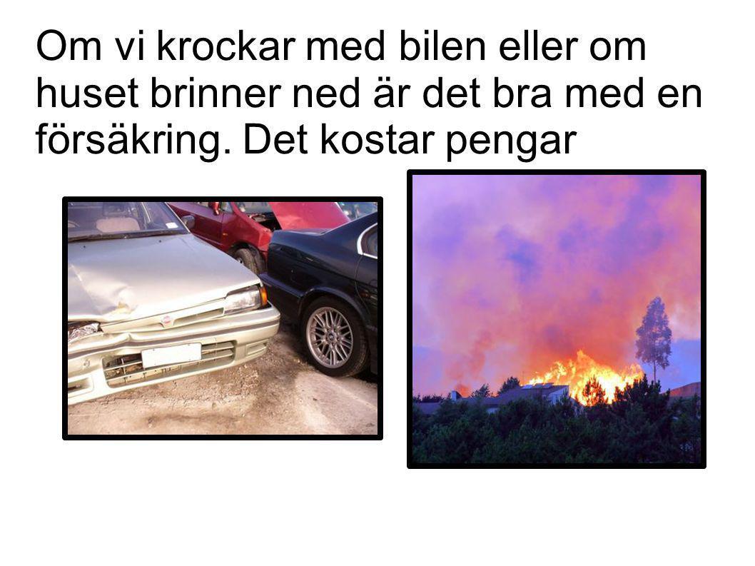Om vi krockar med bilen eller om huset brinner ned är det bra med en försäkring. Det kostar pengar