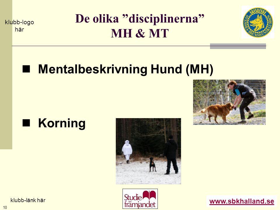 De olika disciplinerna MH & MT