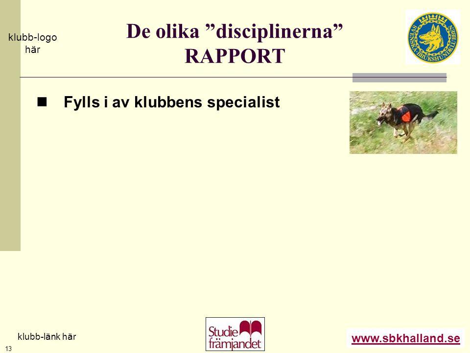 De olika disciplinerna RAPPORT