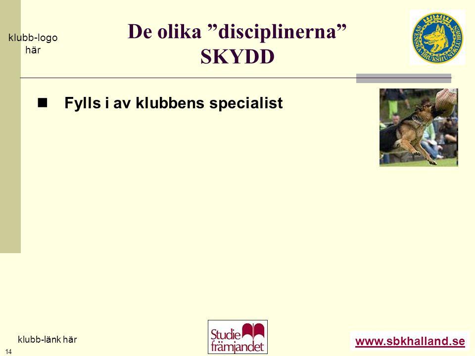 De olika disciplinerna SKYDD
