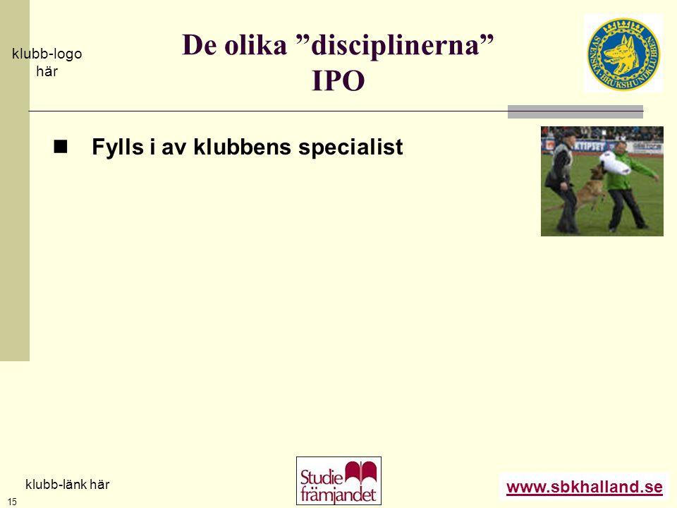 De olika disciplinerna IPO