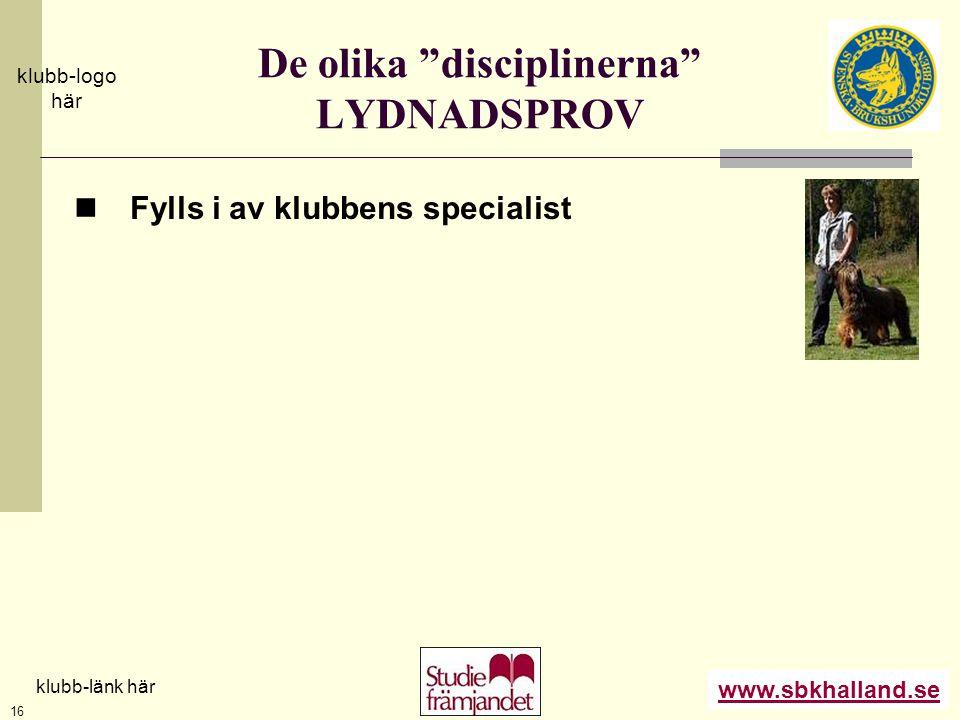 De olika disciplinerna LYDNADSPROV