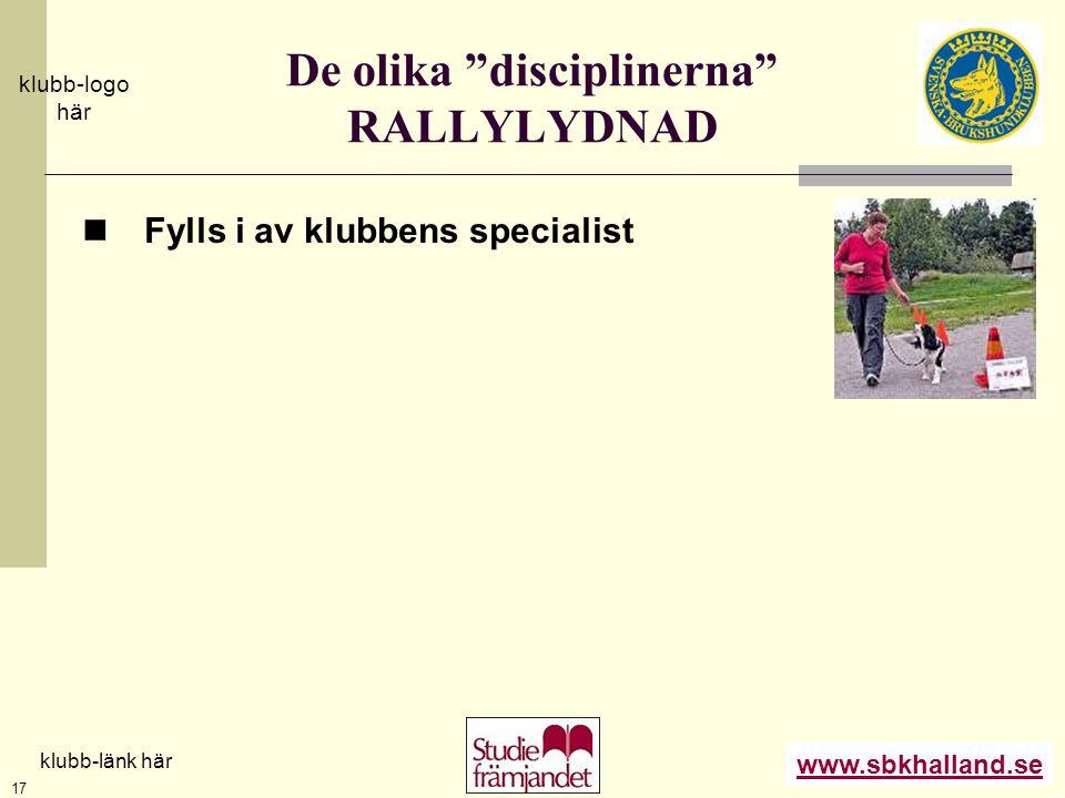 De olika disciplinerna RALLYLYDNAD
