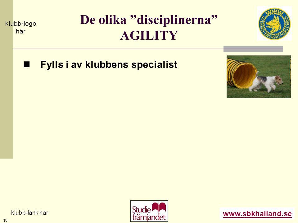 De olika disciplinerna AGILITY