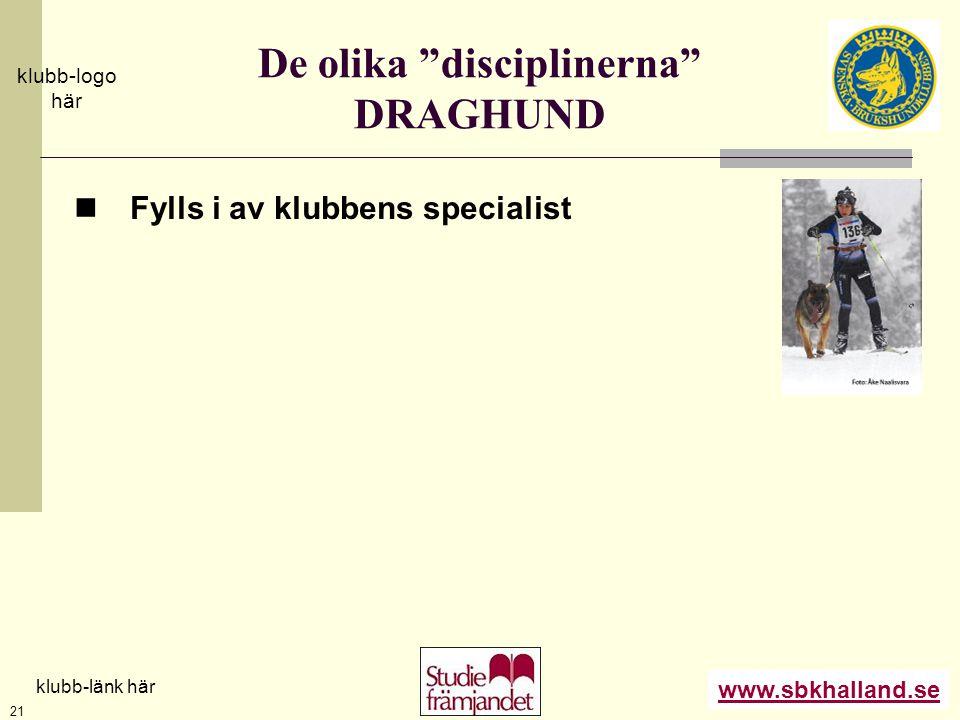 De olika disciplinerna DRAGHUND