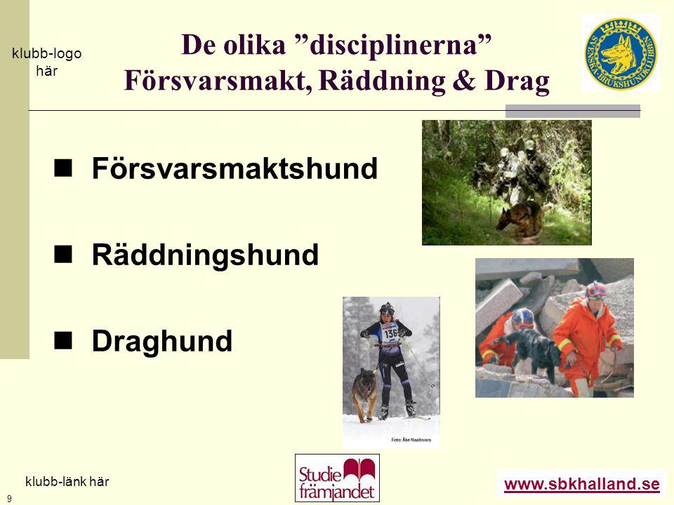 De olika disciplinerna Försvarsmakt, Räddning & Drag