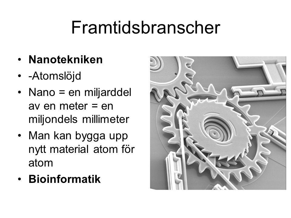 Framtidsbranscher Nanotekniken -Atomslöjd