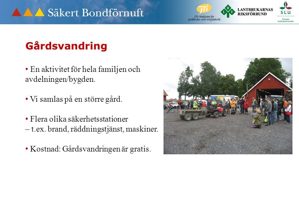 Gårdsvandring En aktivitet för hela familjen och avdelningen/bygden.