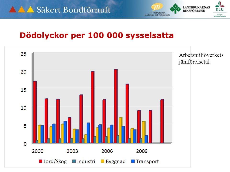 Dödolyckor per 100 000 sysselsatta