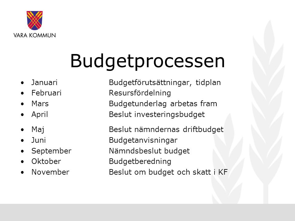 Budgetprocessen Januari Budgetförutsättningar, tidplan