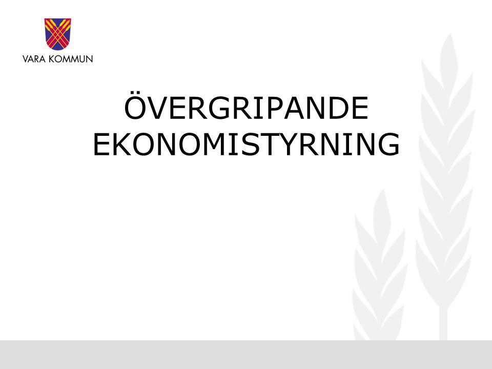 ÖVERGRIPANDE EKONOMISTYRNING