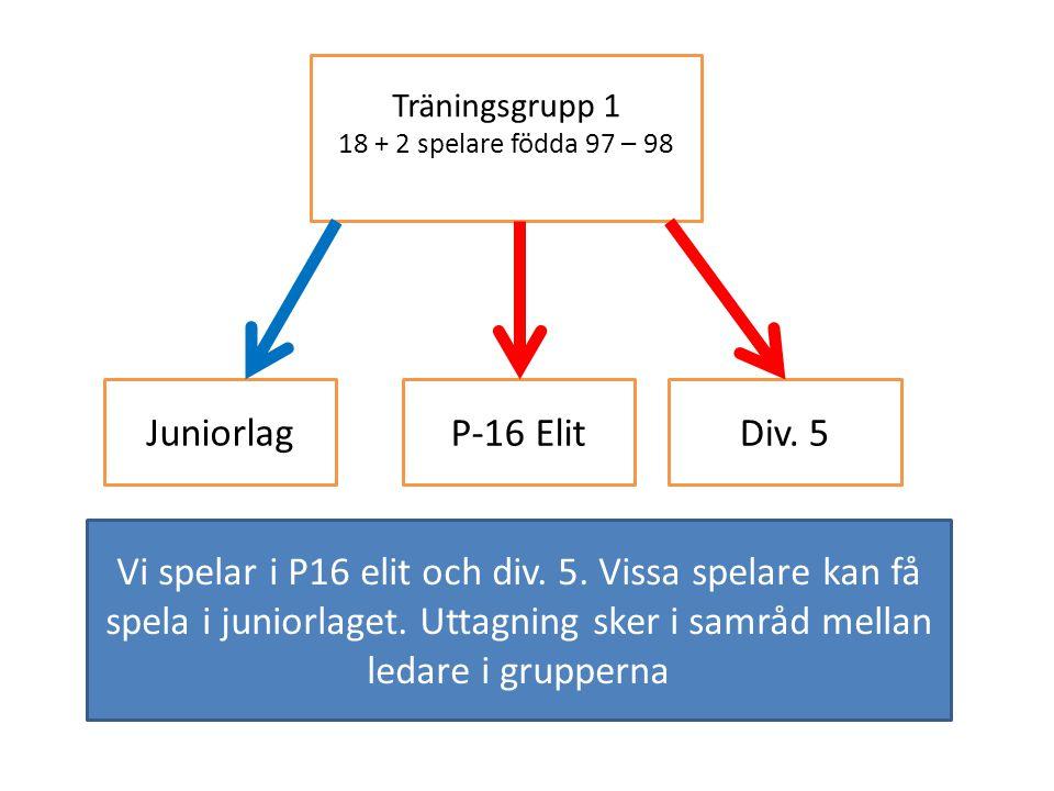 Träningsgrupp 1 18 + 2 spelare födda 97 – 98. Juniorlag. P-16 Elit. Div. 5.