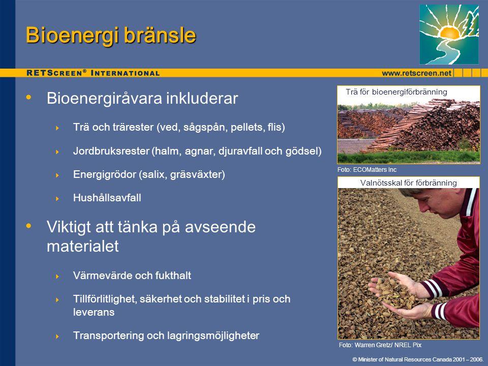Bioenergi bränsle Bioenergiråvara inkluderar