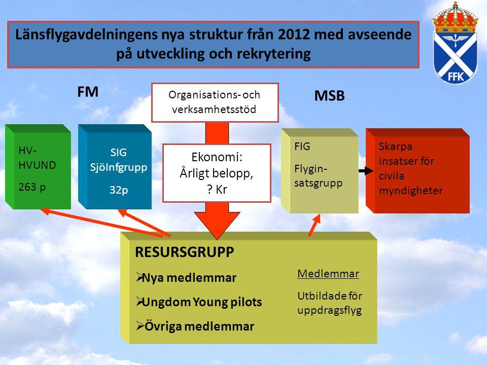 Organisations- och verksamhetsstöd