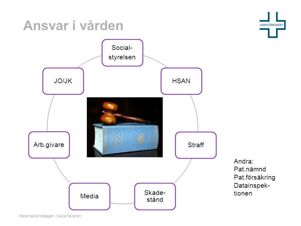 Carita Fallström: Sekretess och tystnadsplikt i elevhälsan 2011
