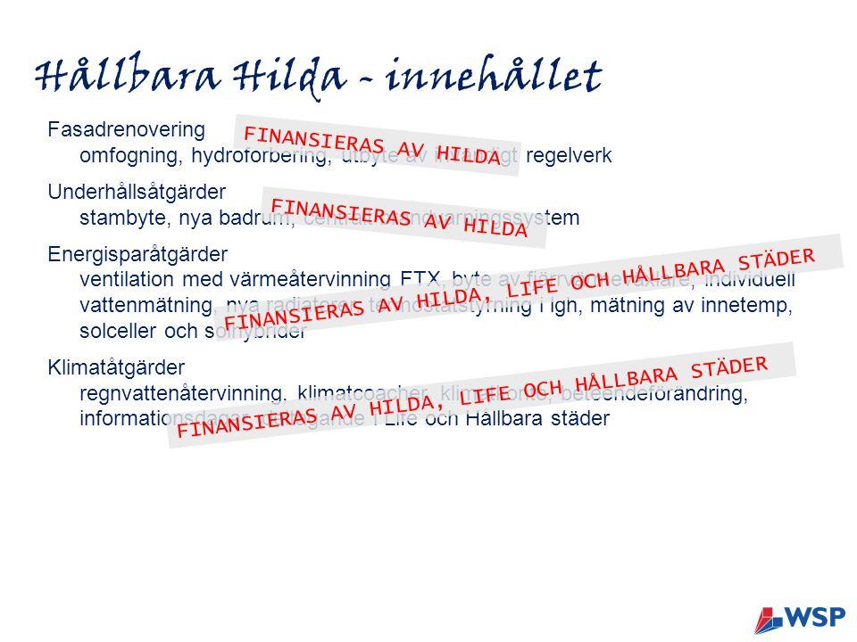 Hållbara Hilda - innehållet