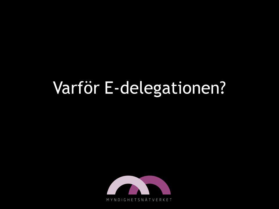 Varför E-delegationen