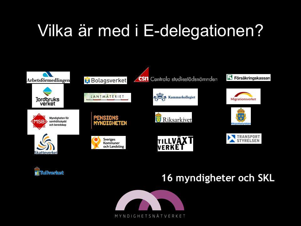 Vilka är med i E-delegationen