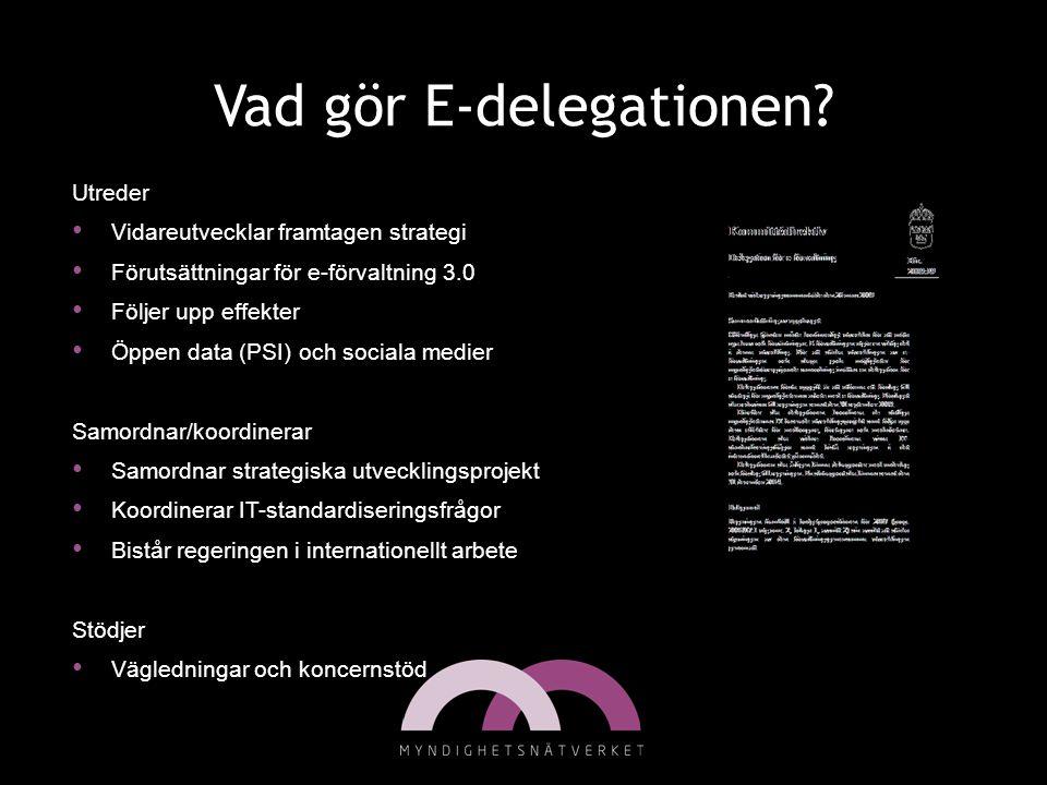 Vad gör E-delegationen