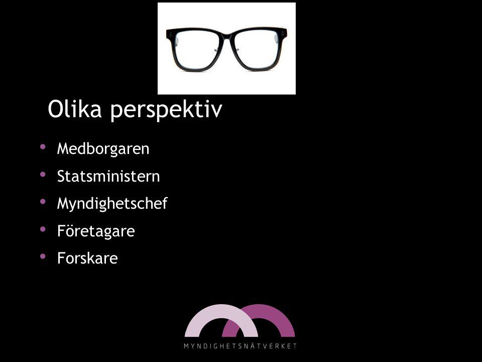 Olika perspektiv Medborgaren Statsministern Myndighetschef Företagare