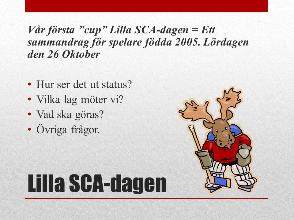 Vår första cup Lilla SCA-dagen = Ett sammandrag för spelare födda 2005. Lördagen den 26 Oktober