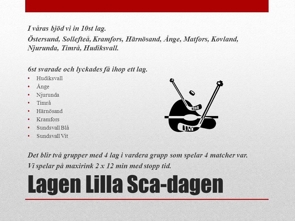 Lagen Lilla Sca-dagen I våras bjöd vi in 10st lag.