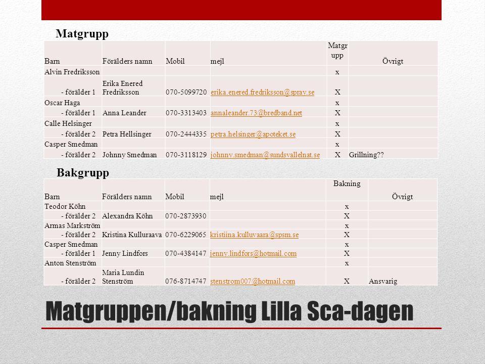 Matgruppen/bakning Lilla Sca-dagen