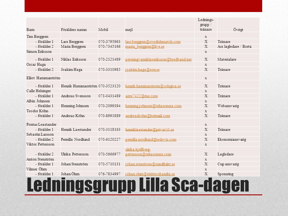 Ledningsgrupp Lilla Sca-dagen