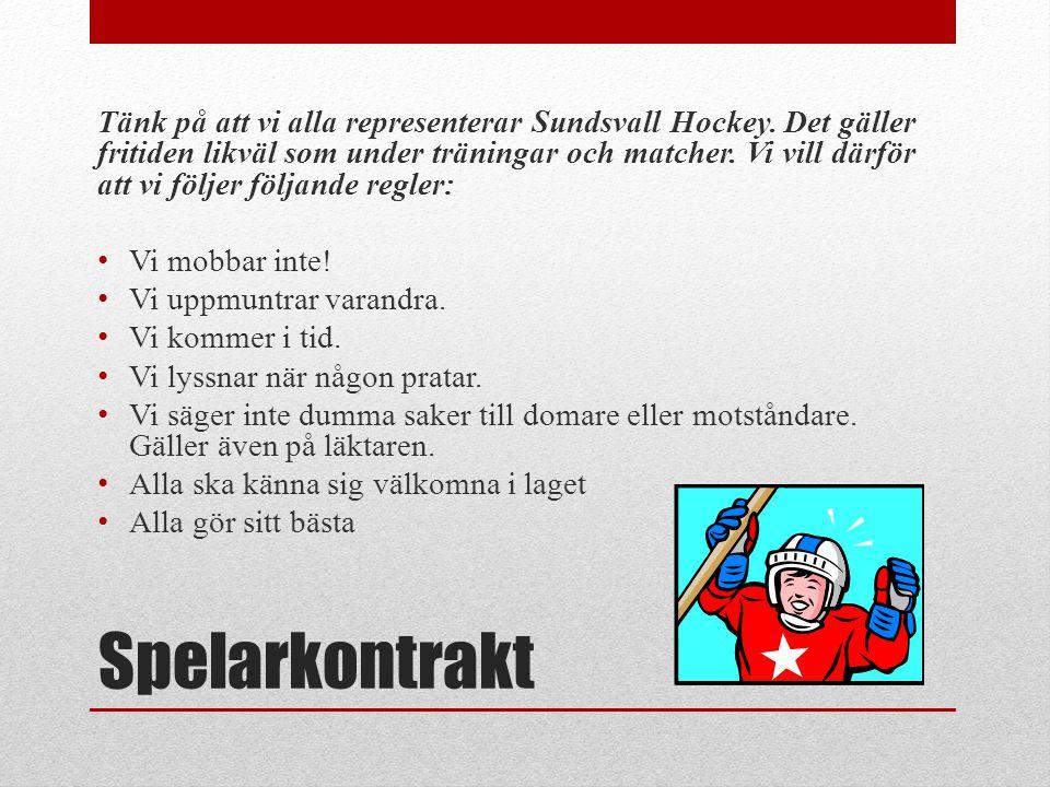 Tänk på att vi alla representerar Sundsvall Hockey