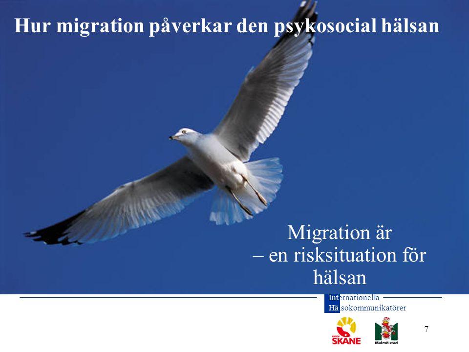 Migration är – en risksituation för hälsan