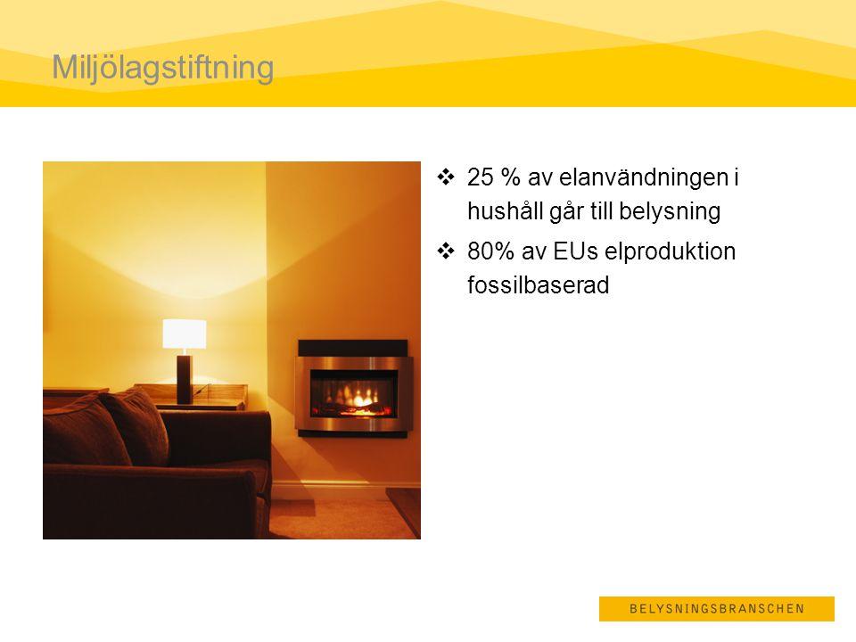 Miljölagstiftning 25 % av elanvändningen i hushåll går till belysning