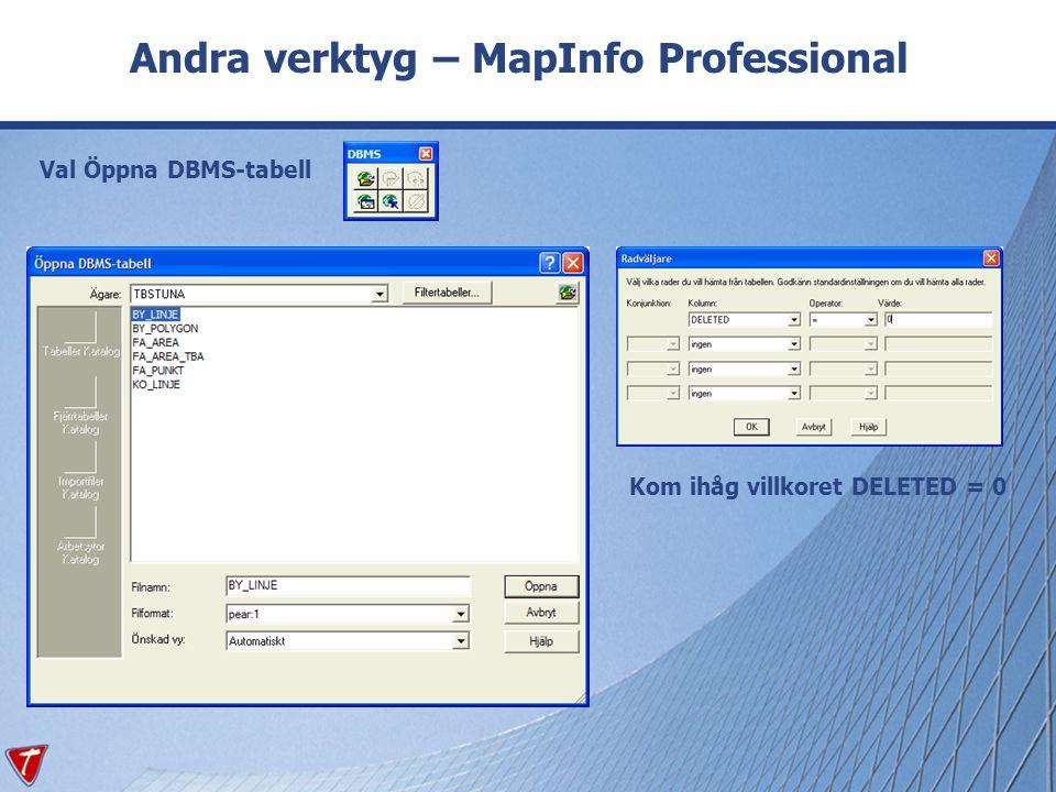 Andra verktyg – MapInfo Professional