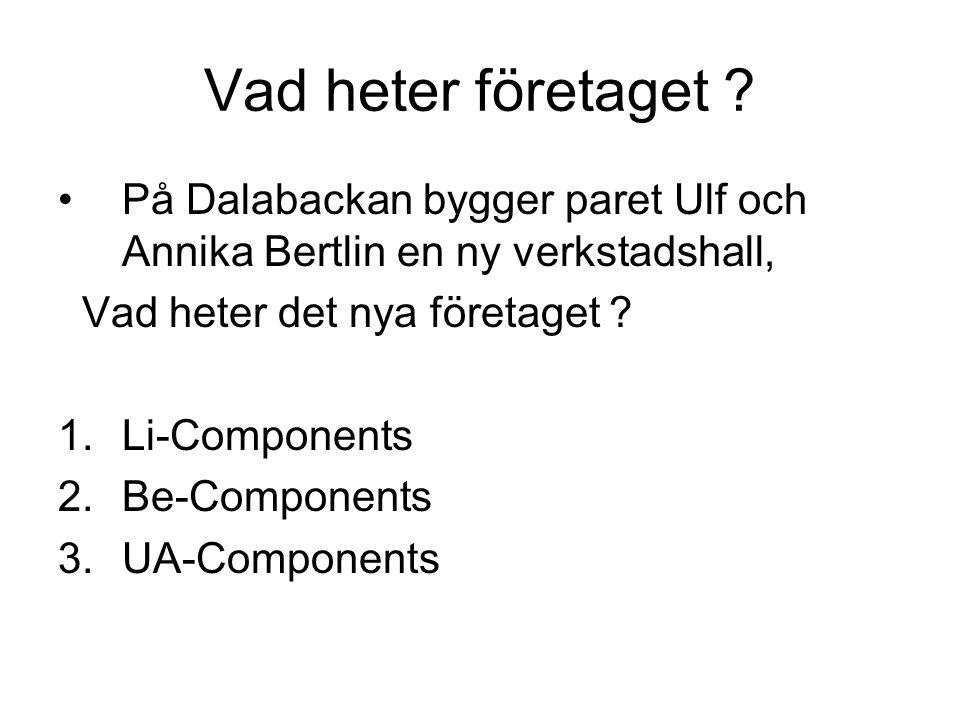 Vad heter företaget På Dalabackan bygger paret Ulf och Annika Bertlin en ny verkstadshall, Vad heter det nya företaget