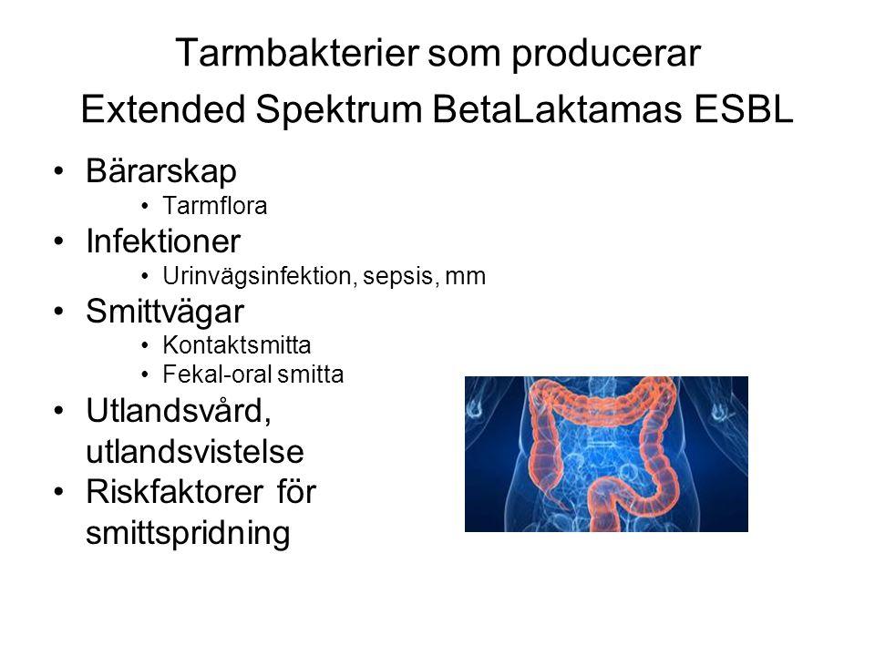 Tarmbakterier som producerar Extended Spektrum BetaLaktamas ESBL