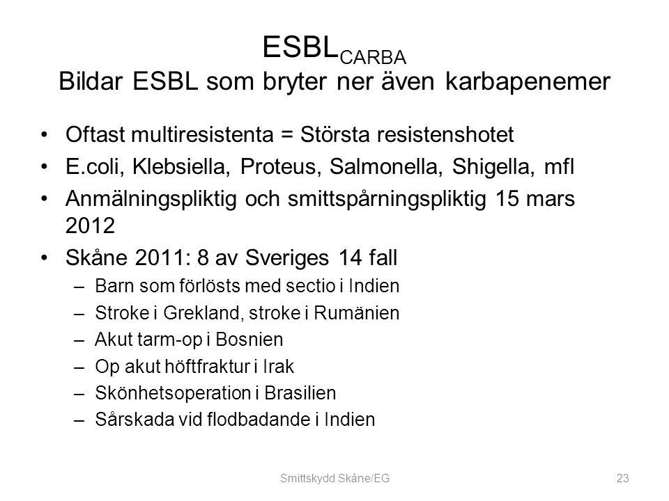 ESBLCARBA Bildar ESBL som bryter ner även karbapenemer