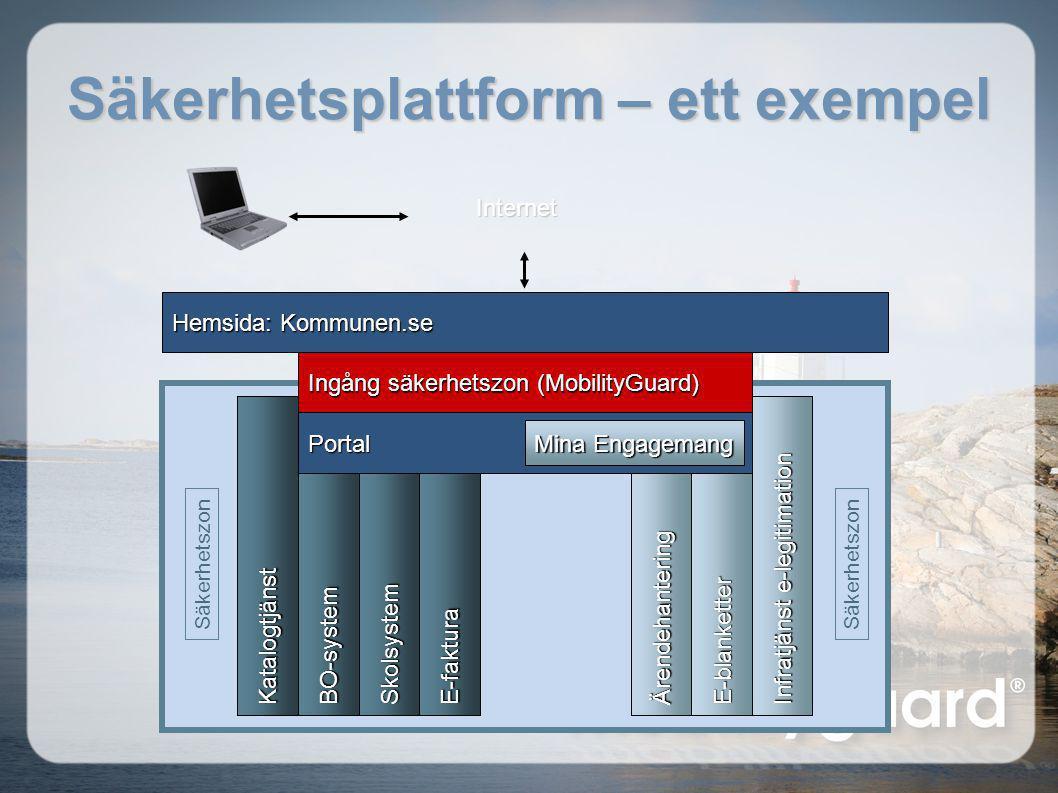 Säkerhetsplattform – ett exempel