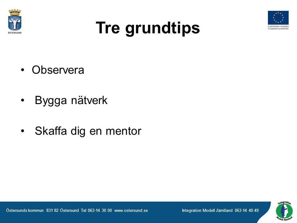 Tre grundtips Observera Bygga nätverk Skaffa dig en mentor