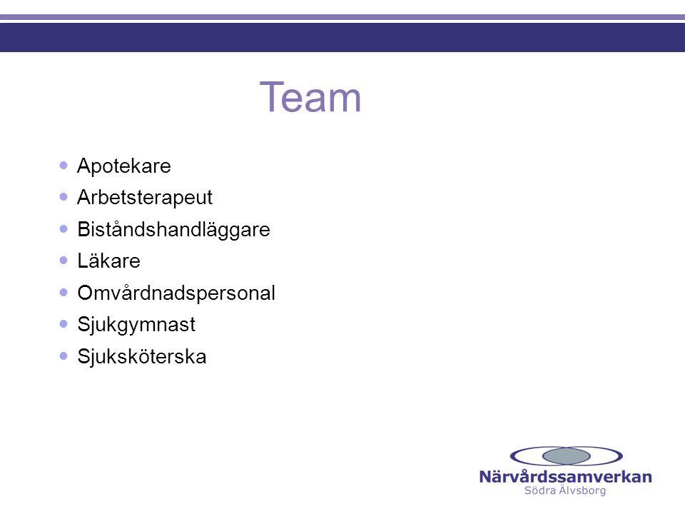Team Apotekare Arbetsterapeut Biståndshandläggare Läkare