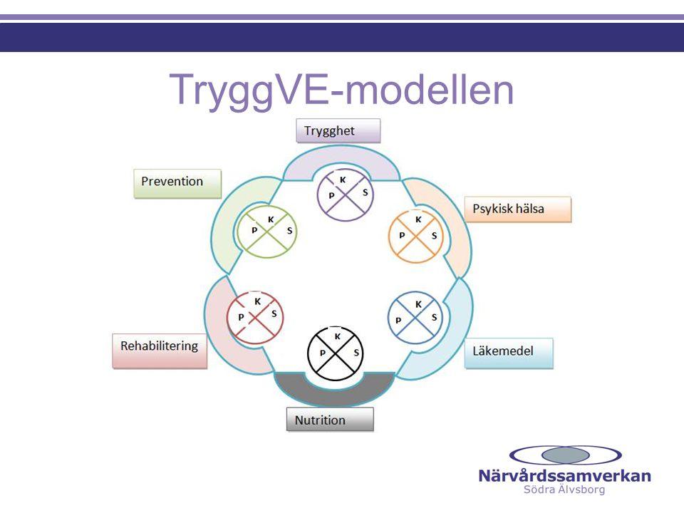 TryggVE-modellen