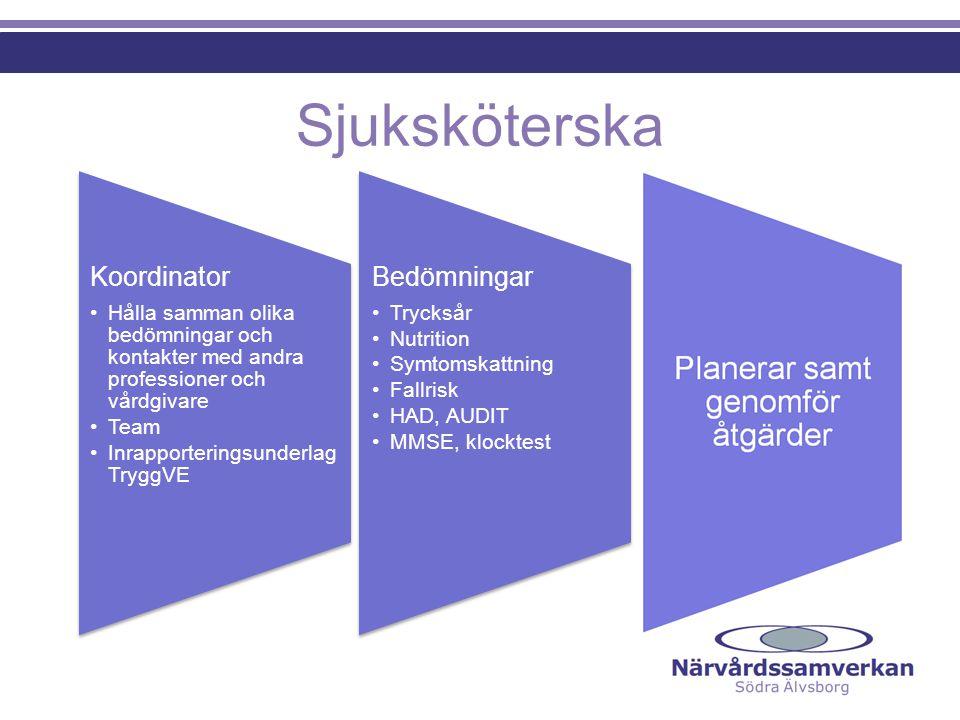 Sjuksköterska Koordinator Bedömningar