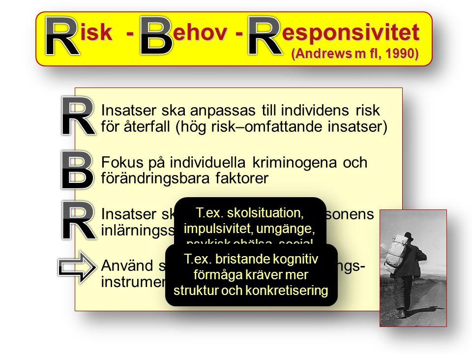 R B R R B R  isk - ehov - esponsivitet