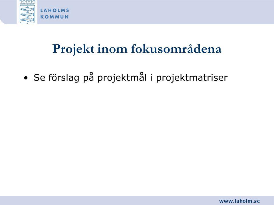 Projekt inom fokusområdena