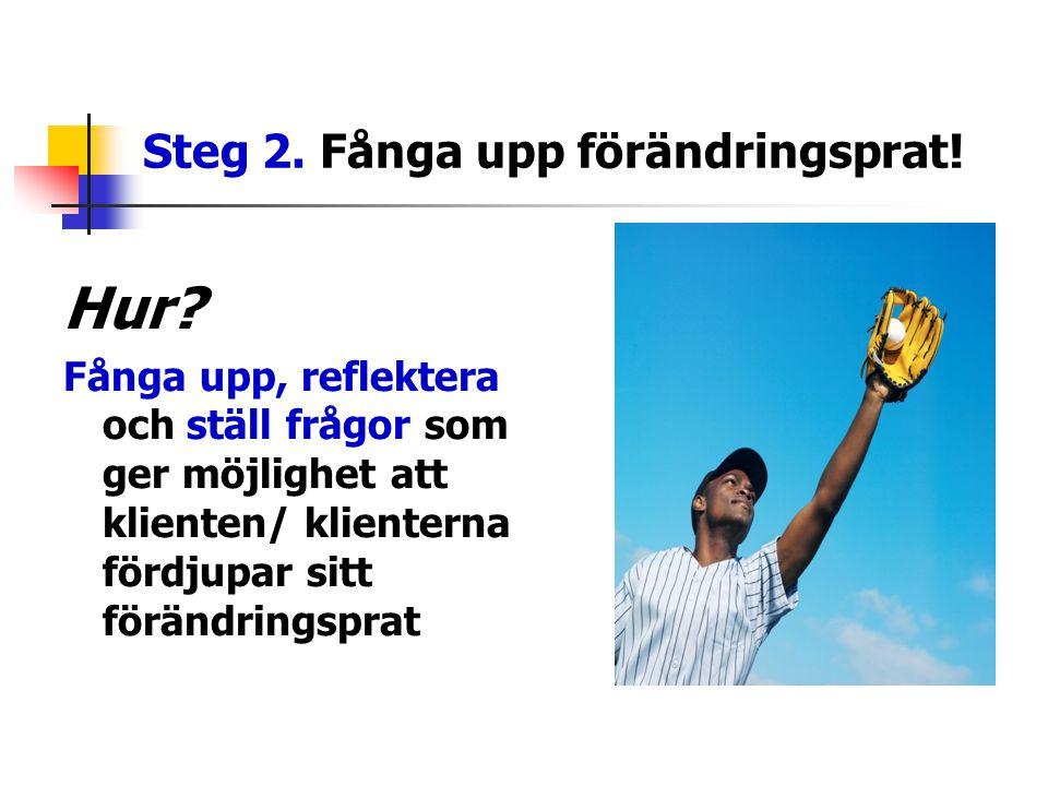 Steg 2. Fånga upp förändringsprat!
