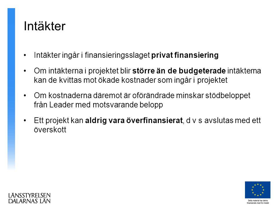 Intäkter Intäkter ingår i finansieringsslaget privat finansiering