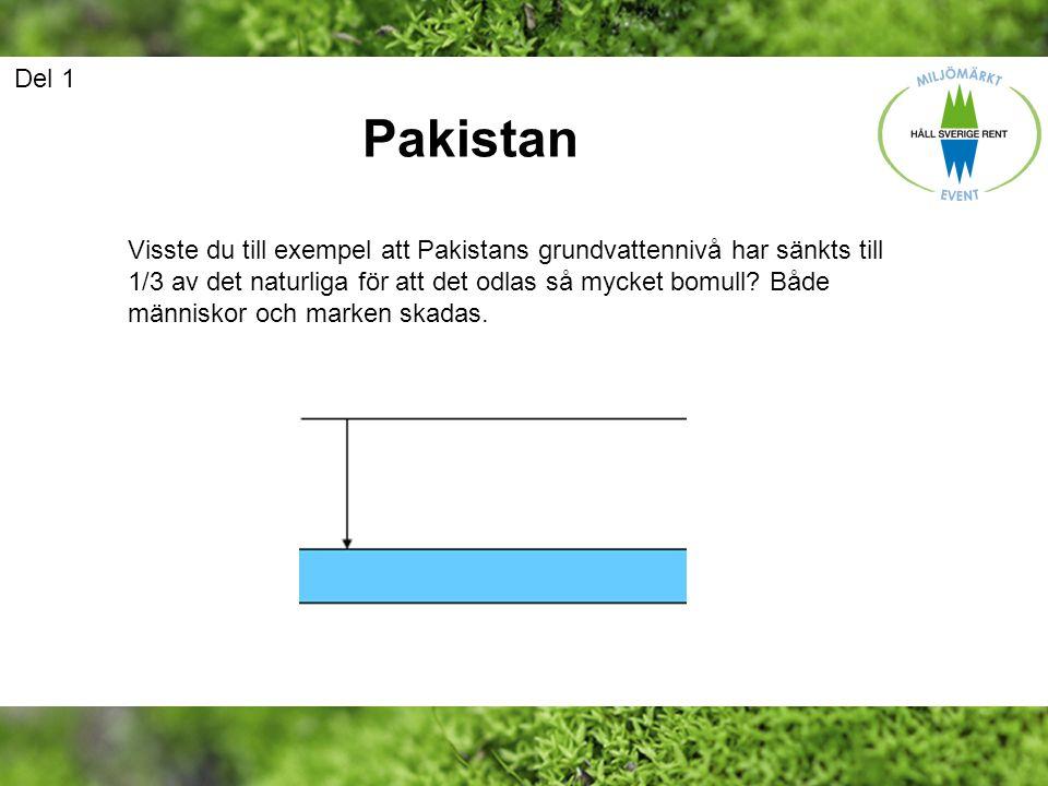 Del 1 Pakistan.